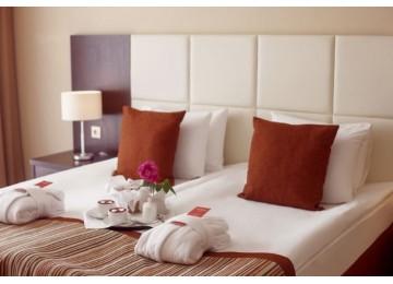 Стандарт 2-местный 1-комнатный (без балкона) | Отель Бридж Резорт Сочи