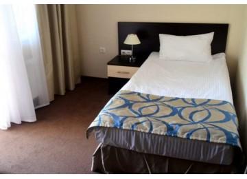 Стандарт 1-комнатный 1-местный | Гамма Сириус Парк Отель