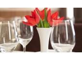 Отель «tulipinnomega » Лобби-бар