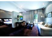 Отель Родина, 2-местный 1-комнатный deluxe suite