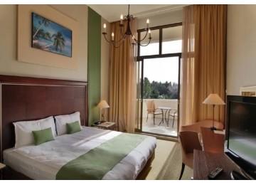 Стандарт 2- местный 1 комнатный (вид на горы)| Spa отель Острова