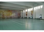 Санатори УДП РФ Русь, тенисный корт. спортивный зал