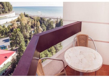 Стандарт 1-местный | Отель Алеан Фэмили Резорт Спутник